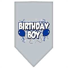Mirage Pet Products Birthday Boy Screen Print Bandana Grey Large
