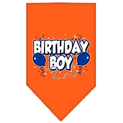 Mirage Pet Products Birthday Boy Screen Print Bandana Orange Small
