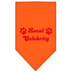 Mirage Pet Products Local Celebrity Screen Print Bandana Orange Large