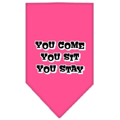 Mirage Pet Products You Come, You Sit, You Stay Screen Print Bandana Bright Pink Large