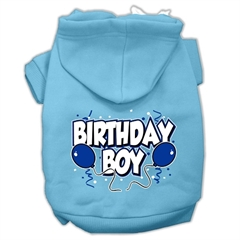 Mirage Pet Products Birthday Boy Screen Print Pet Hoodies Baby Blue Size Med (12)