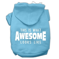 Mirage Pet Products This is What Awesome Looks Like Dog Pet Hoodies Baby Blue Size XL (16)