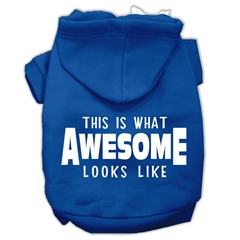 Mirage Pet Products This is What Awesome Looks Like Dog Pet Hoodies Blue Size Sm (10)