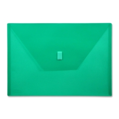 "Lion Design-R-Line Poly Envelope - A4 - 8 17/64"" x 11 11/16"" Sheet Size - Poly - Green - Recycled - 1 Each"