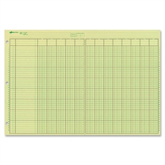 "National Side Punched Analysis Pad - 50 Sheet(s) - Gummed - 11"" x 16.37"" Sheet Size - 3 x Holes - Green Sheet(s) - Green, Brown Print Color - 50 / Pad"