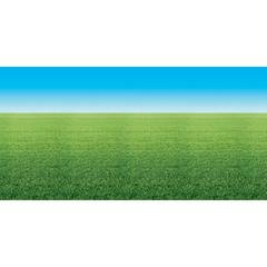 """Fadeless Summer Horizon Design Bulletin Board Papers - Display, Decoration, Bulletin Board, Table Skirting, Classroom - 48"""" x 50 ft - 1 Roll - Assorted"""
