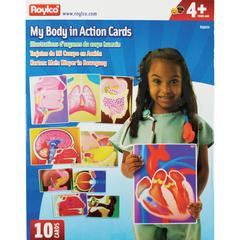 Roylco My Body In Action Animation Cards - Theme/Subject: Learning - Skill Learning: Human Body, Organ - 10 Pieces - 4+