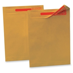 "Quality Park Tamper-indicating Envelope - Security - 13"" Width x 10"" Length - 100 / Box - Kraft"