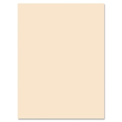 "Pacon Medium Weight Tagboard Paper - 18"" x 24"" - 100 / Pack - Manila"