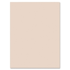 "Pacon Heavyweight Tagboard Paper - 24"" x 36"" - 100 / Pack - Manila"
