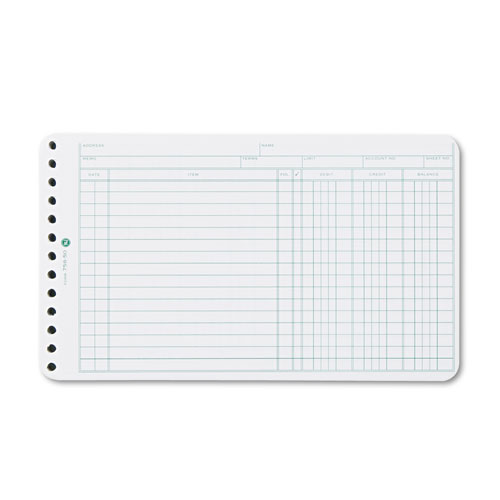Extra Sheets for Six-Ring Ledger Binder, 100/Pack. Picture 1