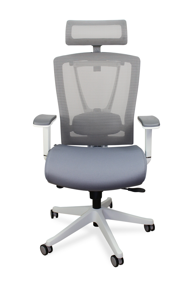 Autonomous Ergochair Premium Ergonomic Office Chair Gray