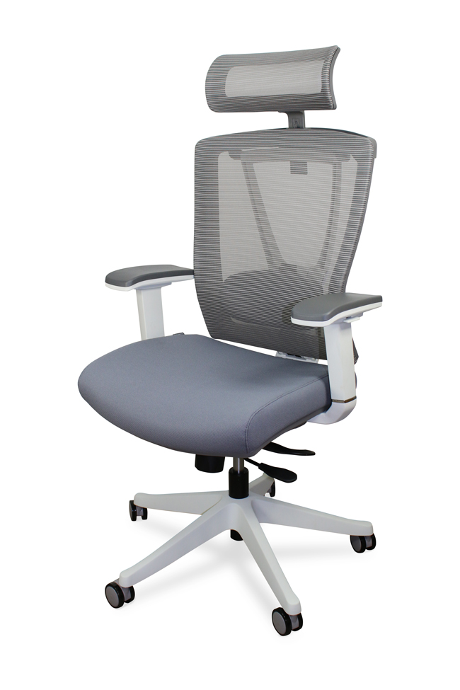 Autonomous Ergochair Premium Ergonomic Office Chair Gray