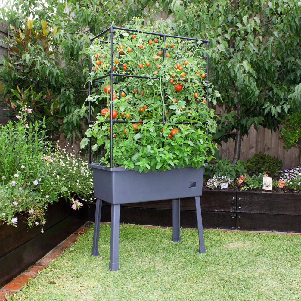 "Patio Ideas -  15.75"" x 31.5"" x 63""  Self-Watering Elevated Planter with Trellis Frame and Greenhouse Cover. Picture 2"