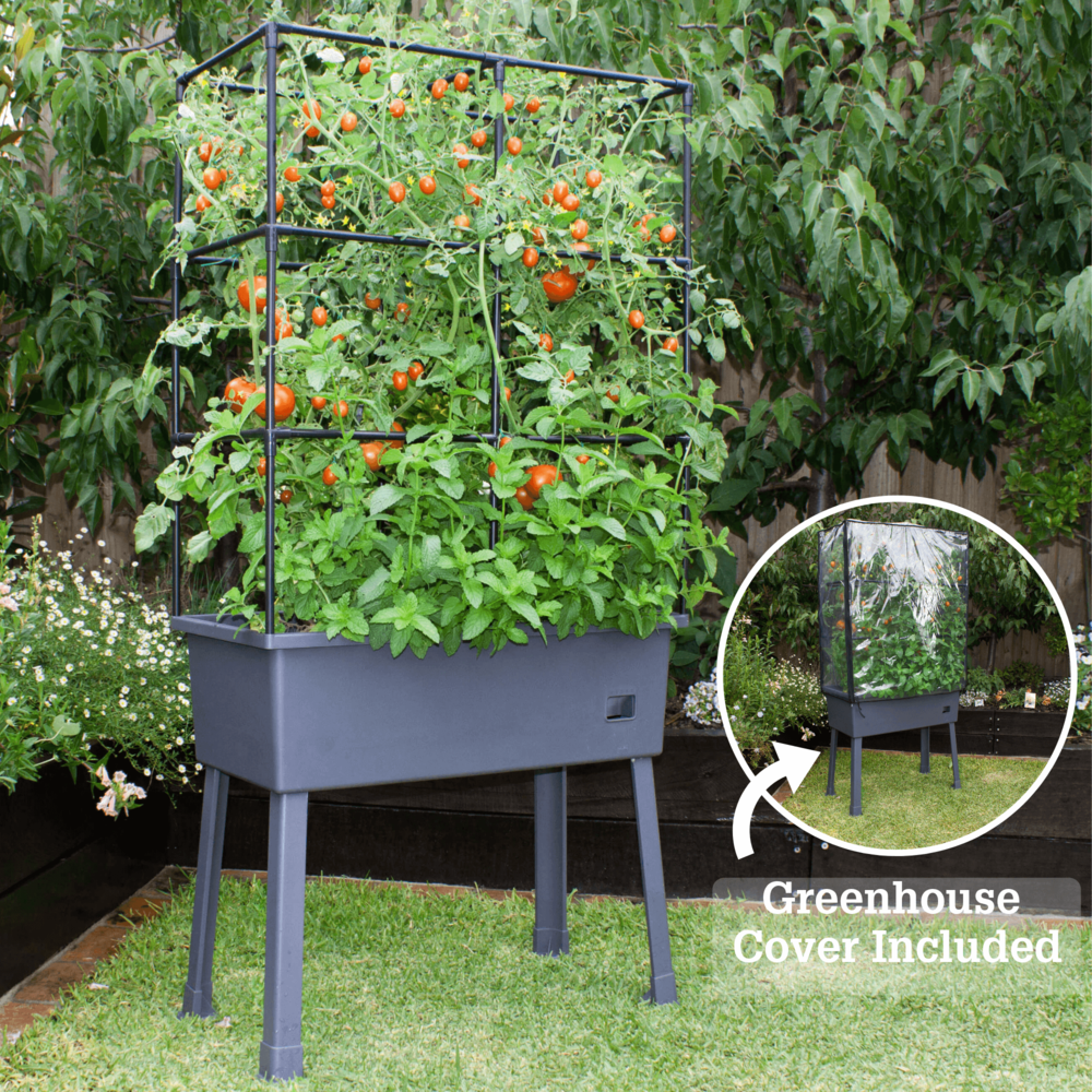 "Patio Ideas -  15.75"" x 31.5"" x 63""  Self-Watering Elevated Planter with Trellis Frame and Greenhouse Cover. Picture 4"