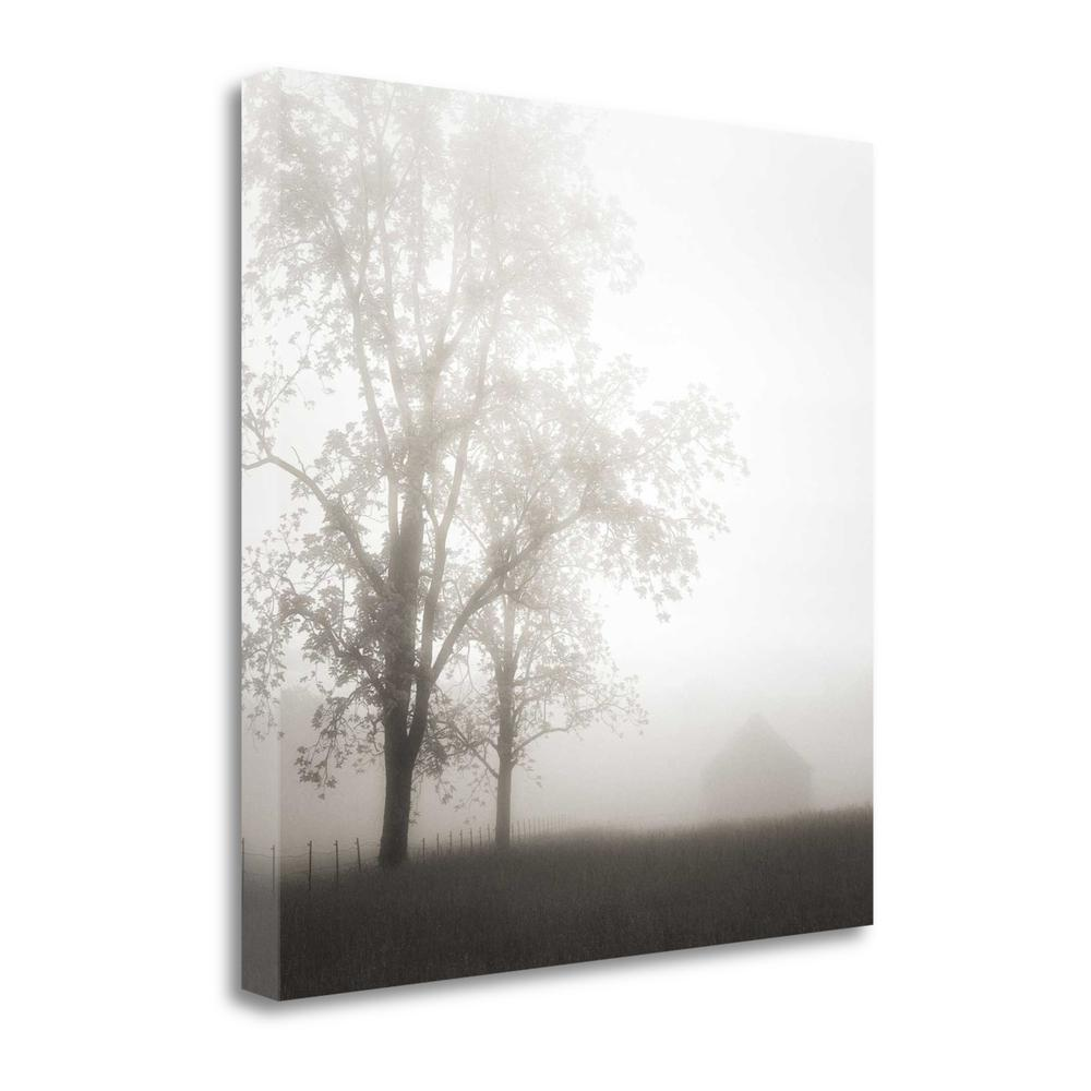 """Farmland Appalachia 2013"" By Nicholas Bell, Giclee Print on Gallery Wrap Canvas. Picture 1"