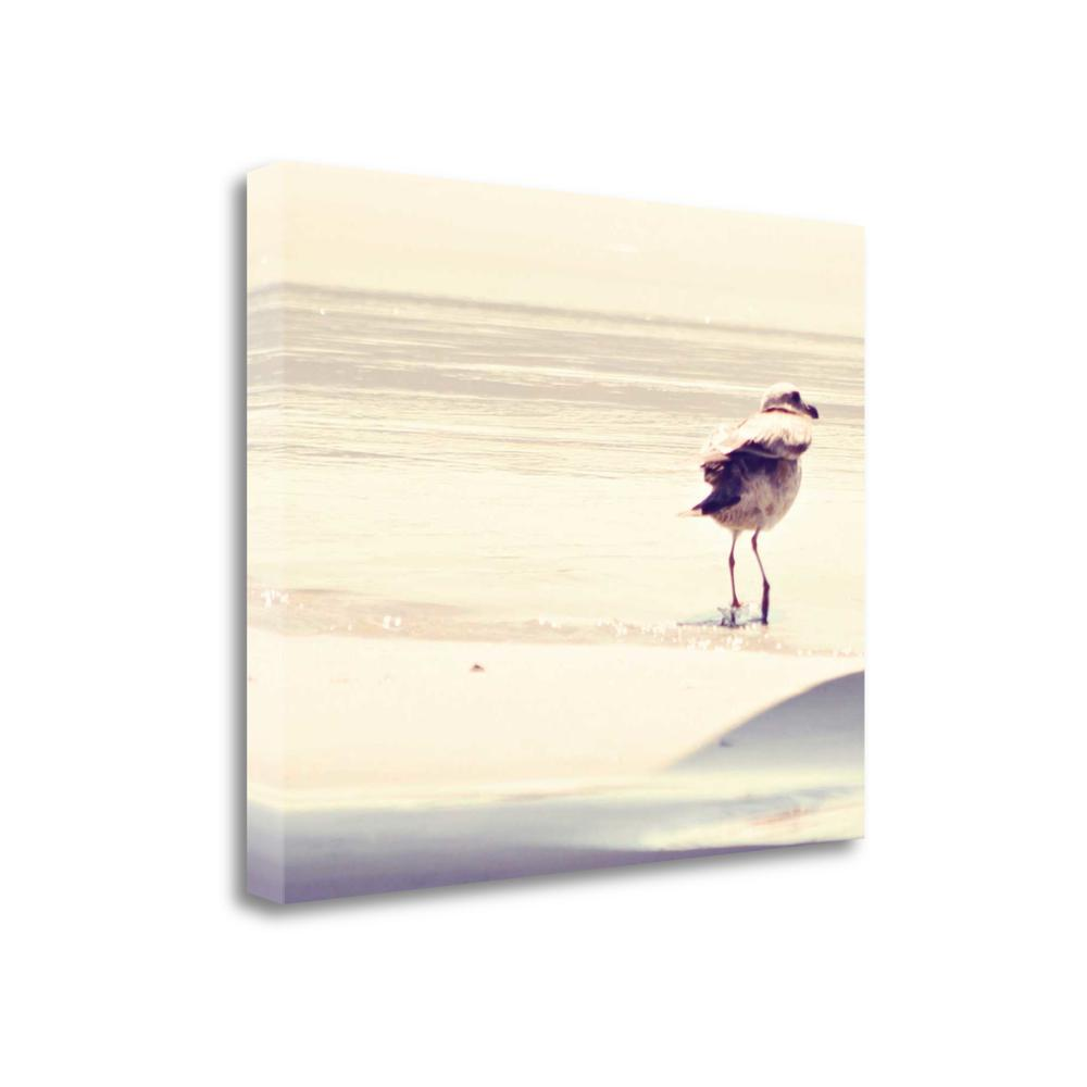 """""""Bird At The Beach"""" By Sylvia Coomes, Giclee Print on Gallery Wrap Canvas. Picture 1"""