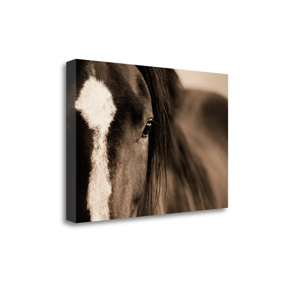 """Dark Eyes"" By Lisa Dearing, Fine Art Giclee Print on Gallery Wrap Canvas. Picture 1"