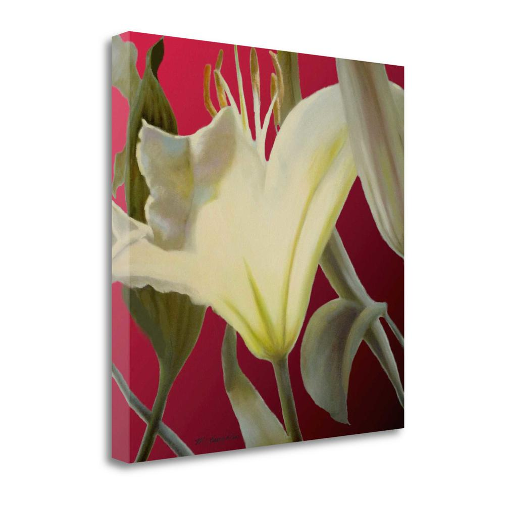 """""""Lily Red"""" By Jan Mclaughlin, Fine Art Giclee Print on Gallery Wrap Canvas. Picture 1"""