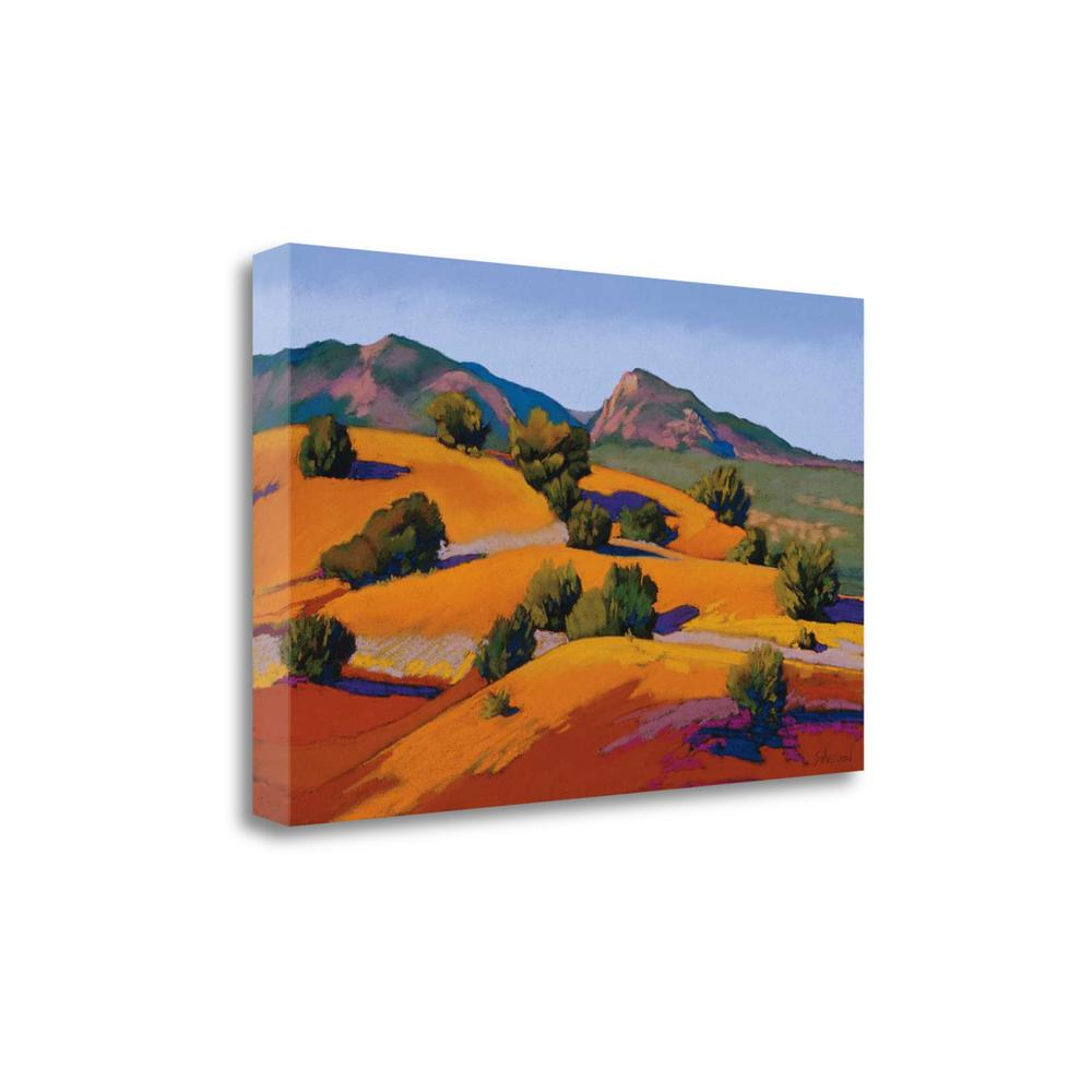 """Juniper Hills"" By Mary Silverwood, Giclee Print on Gallery Wrap Canvas. Picture 1"