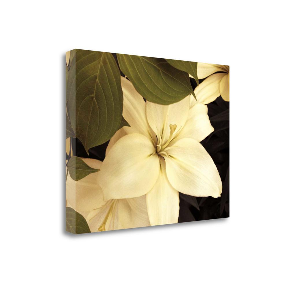 """""""Lily And Leaves"""" By Rebecca Swanson, Giclee Print on Gallery Wrap Canvas. Picture 1"""