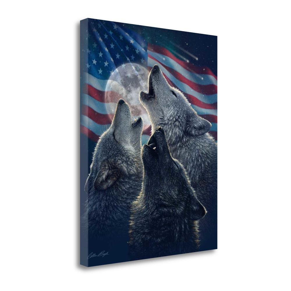 """Wolf Trinity Patriotic"" By Colin Bogle, Giclee Print on Gallery Wrap Canvas. Picture 1"