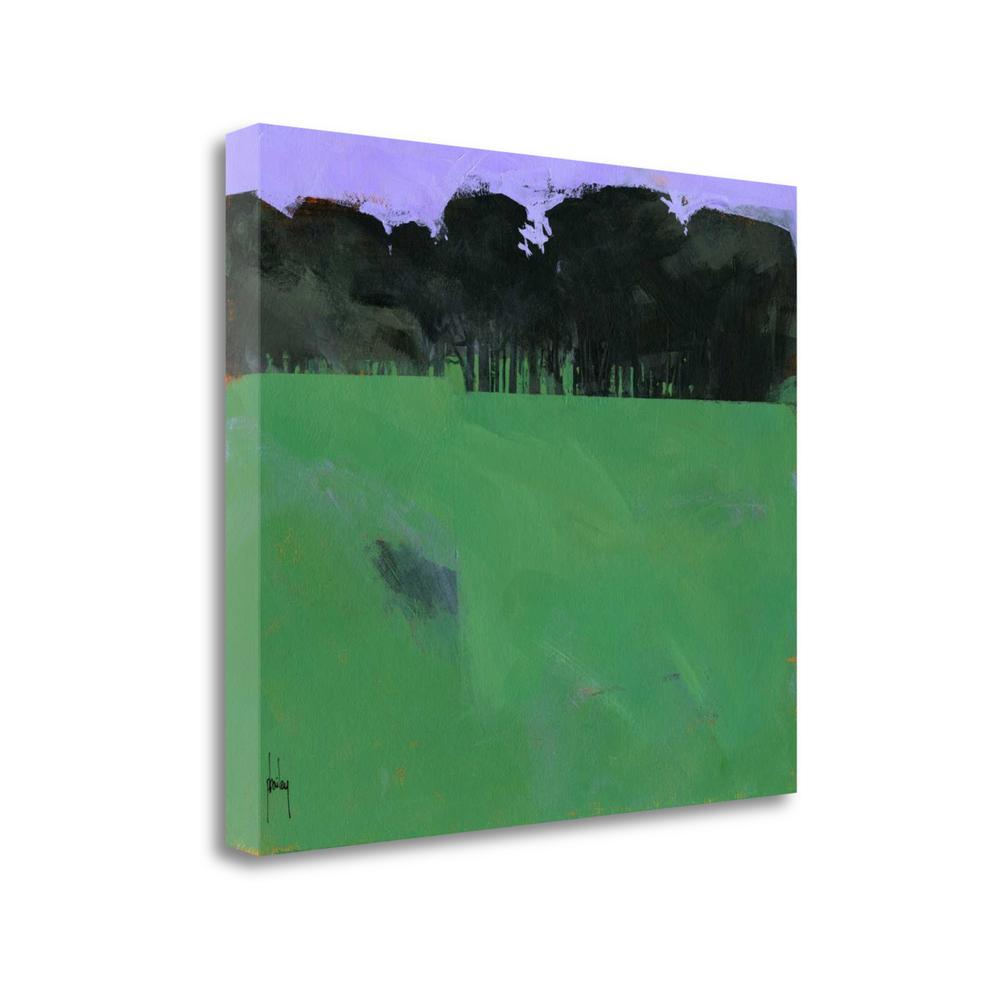 """Dark Grove"" By Paul Bailey, Fine Art Giclee Print on Gallery Wrap Canvas. Picture 1"