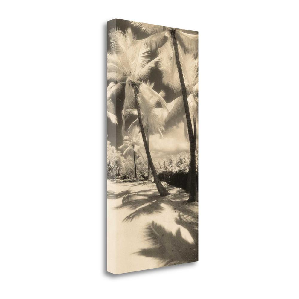 """Palm Shadows II"" By Susan Friedman, Giclee Print on Gallery Wrap Canvas. Picture 1"