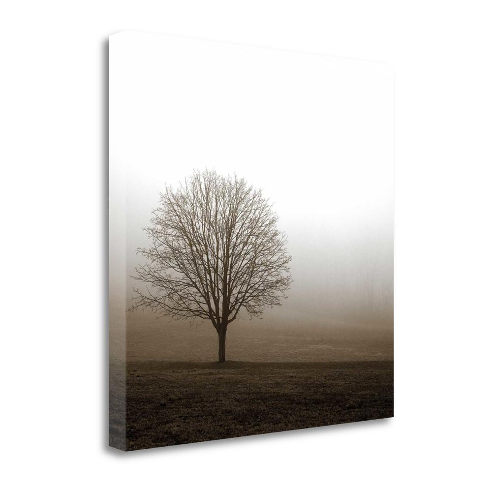 """""""Tree In Mist 1"""" By Photoinc Studio, Giclee Print on Gallery Wrap Canvas. Picture 1"""