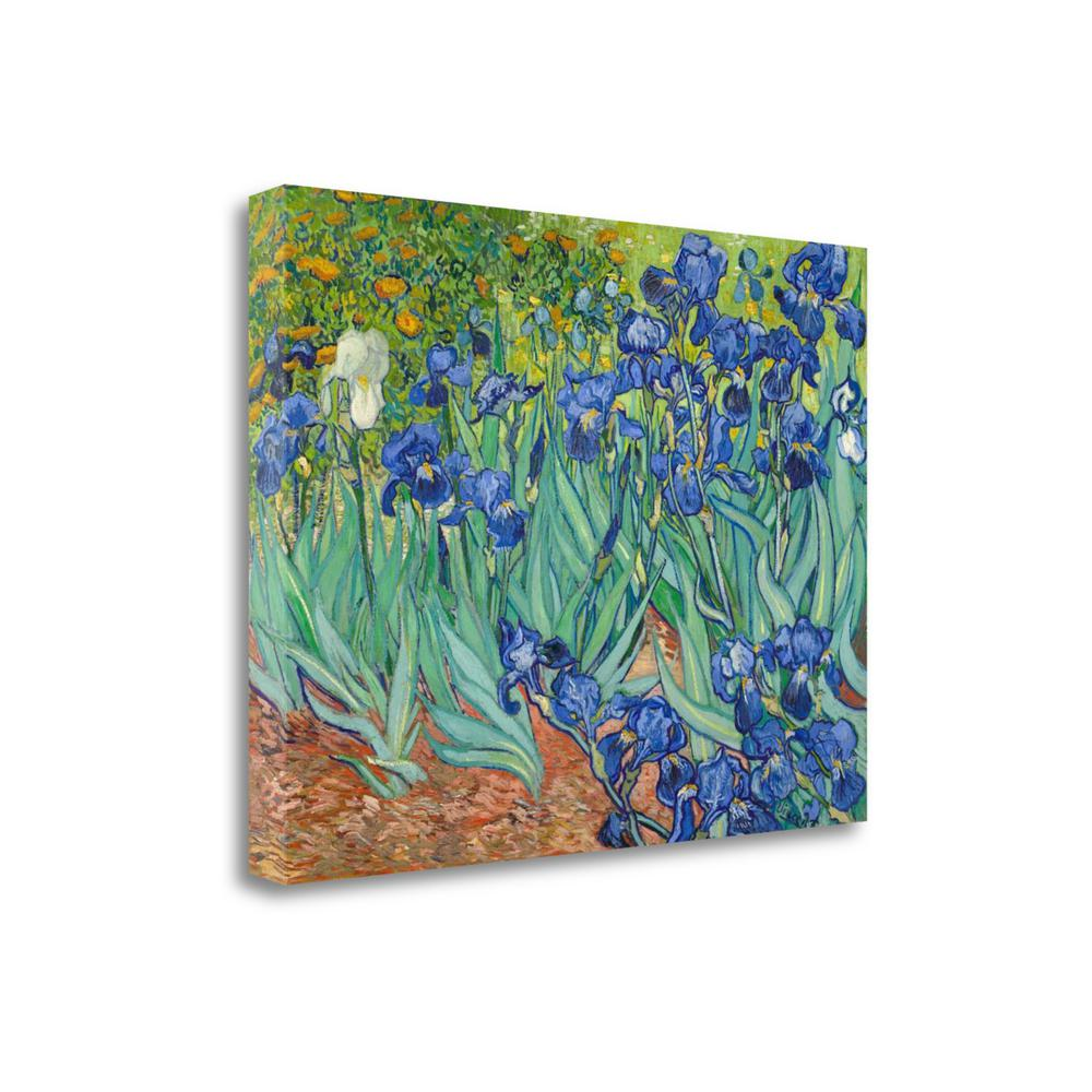 """Irises 1889"" By Vincent Van Gogh, Giclee Print on Gallery Wrap Canvas. Picture 1"