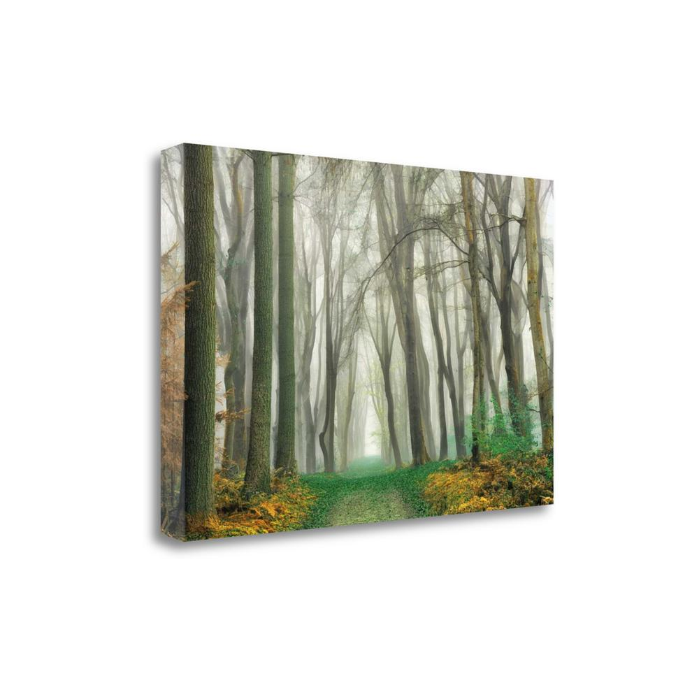 """""""Magic Is Everywhere"""" By Lars Van De Goor, Giclee Print on Gallery Wrap Canvas. Picture 1"""