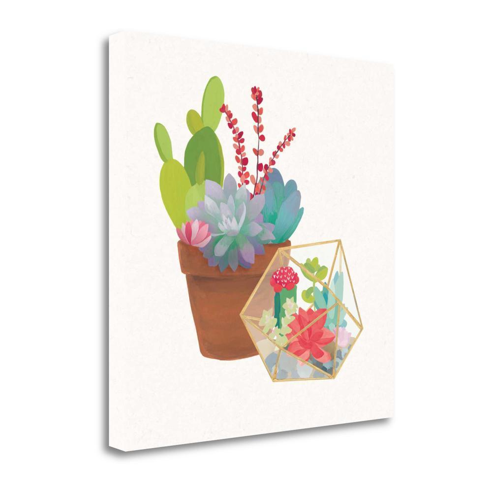 Quot Succulent Garden Ii Quot By Wild Apple Portfolio Giclee On Gallery Wrap Canvas