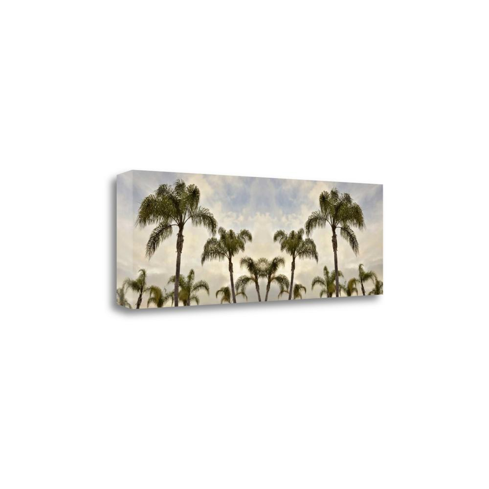 """""""Palm Banner - 1 - Color"""" By Alan Blaustein, Giclee Print on Gallery Wrap Canvas. Picture 1"""