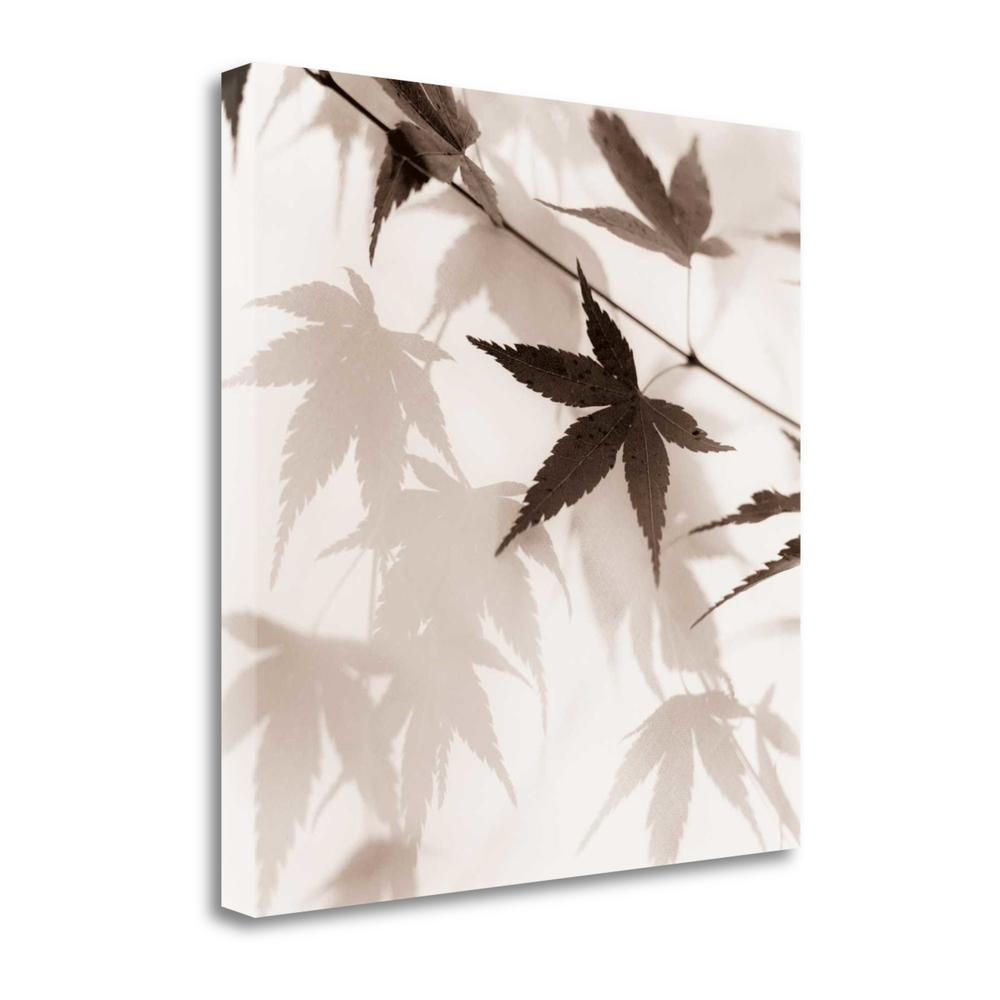 """""""Japanese Maple Leaves No. 2"""" By Alan Blaustein, Giclee on Gallery Wrap Canvas. Picture 1"""