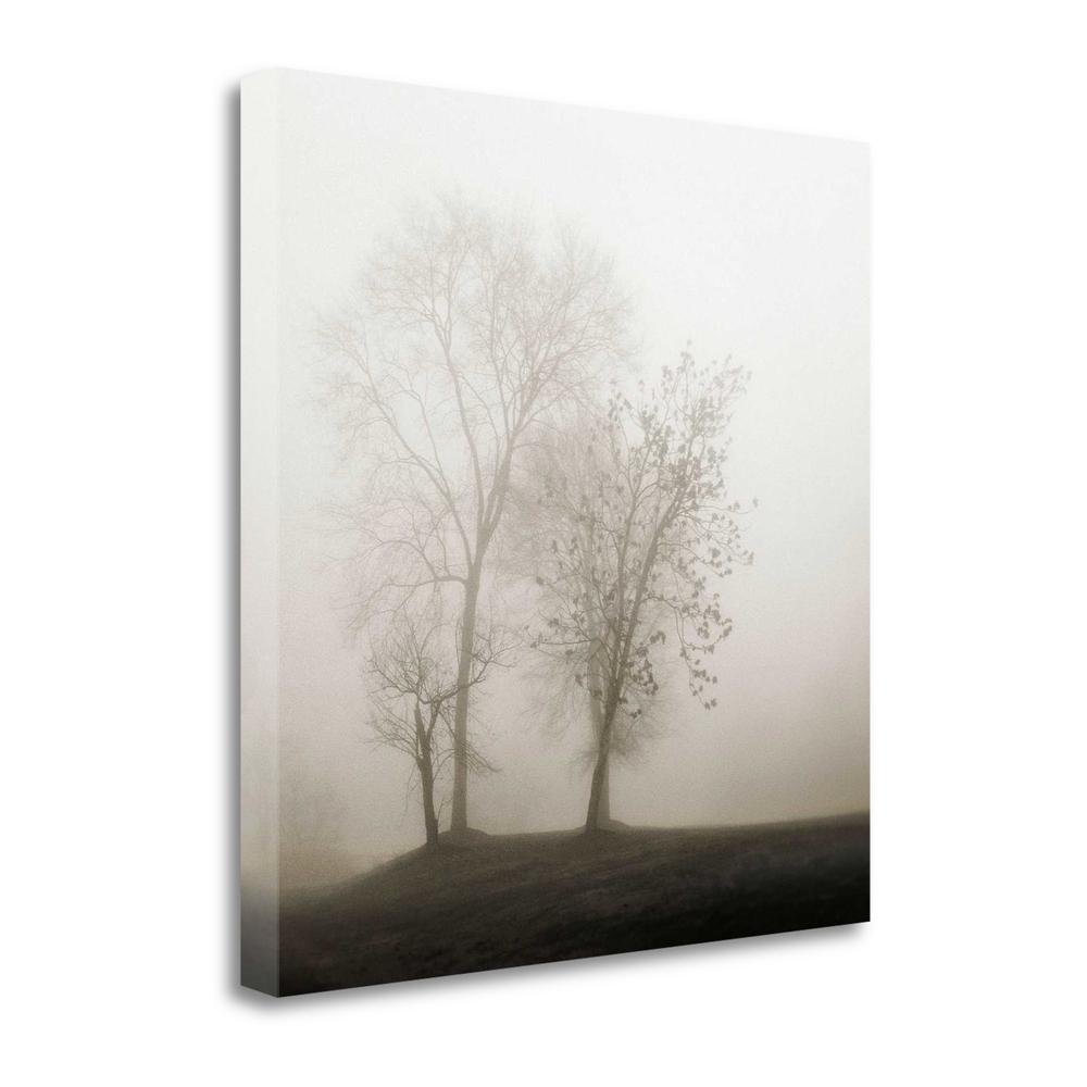 """""""Four Trees In Fog"""" By Nicholas Bell, Giclee Print on Gallery Wrap Canvas. Picture 1"""