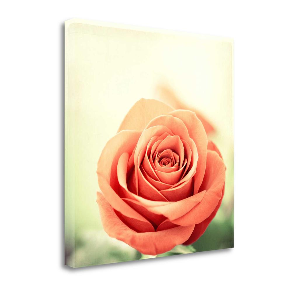 """""""My Perfect Rose"""" By Carolyn Cochrane, Giclee Print on Gallery Wrap Canvas. Picture 1"""