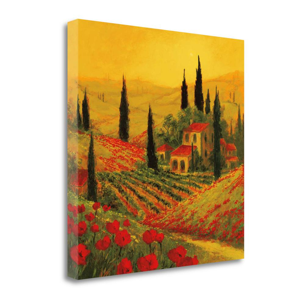 """""""Poppies Of Toscano II"""" By Art Fronckowiak, Giclee Print on Gallery Wrap Canvas. Picture 1"""