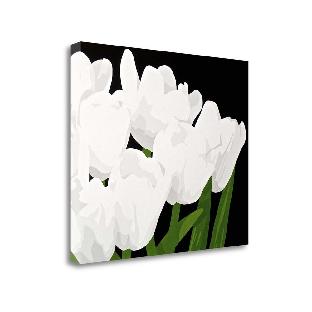 """""""White Tulips"""" By Susan Porter, Fine Art Giclee Print on Gallery Wrap Canvas, Ready to Hang. Picture 1"""