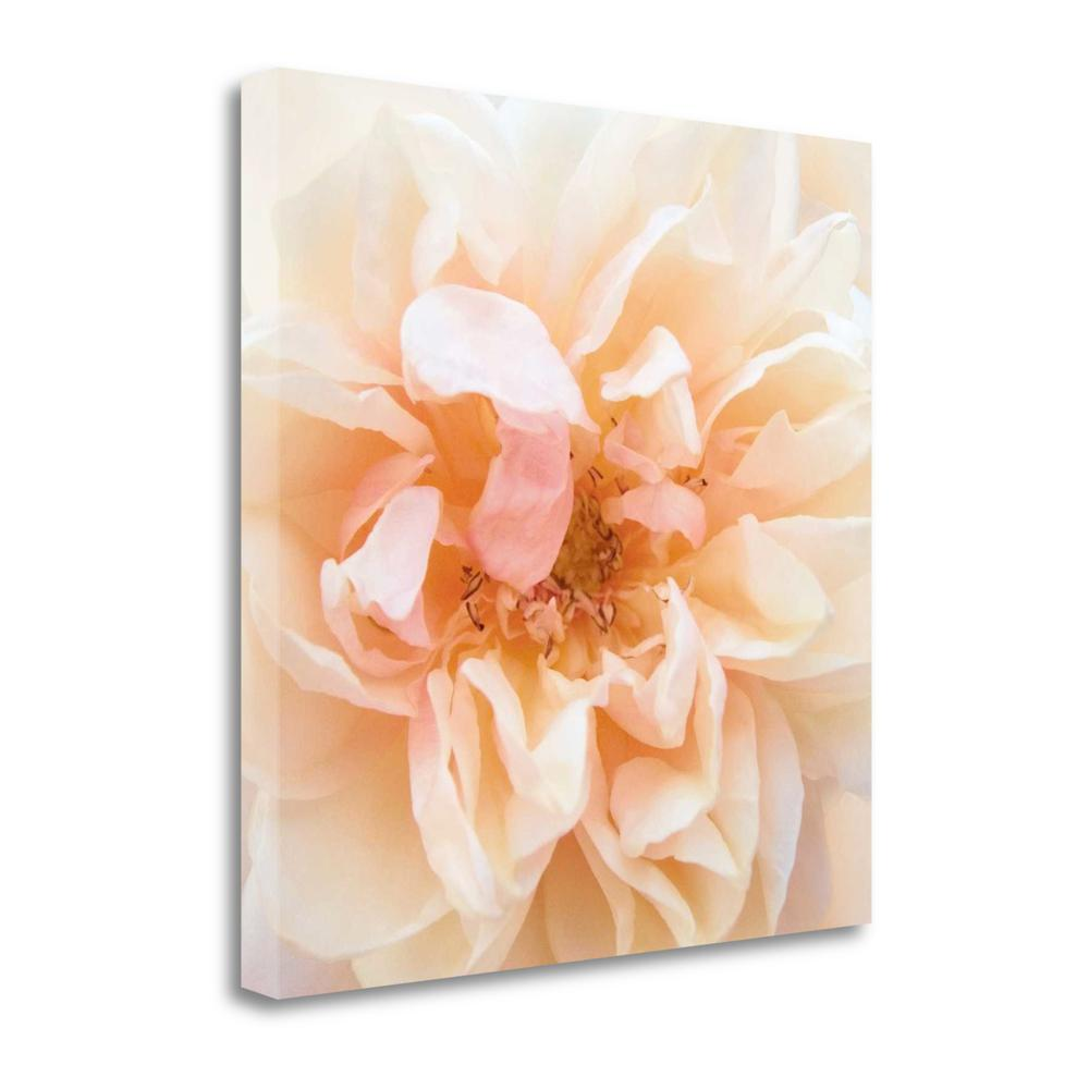 """""""Promise Rose"""" By Rebecca Swanson, Giclee Print on Gallery Wrap Canvas. Picture 1"""
