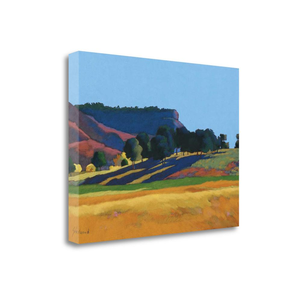 """""""Blue Skies"""" By Mary Silverwood, Fine Art Giclee Print on Gallery Wrap Canvas. Picture 1"""
