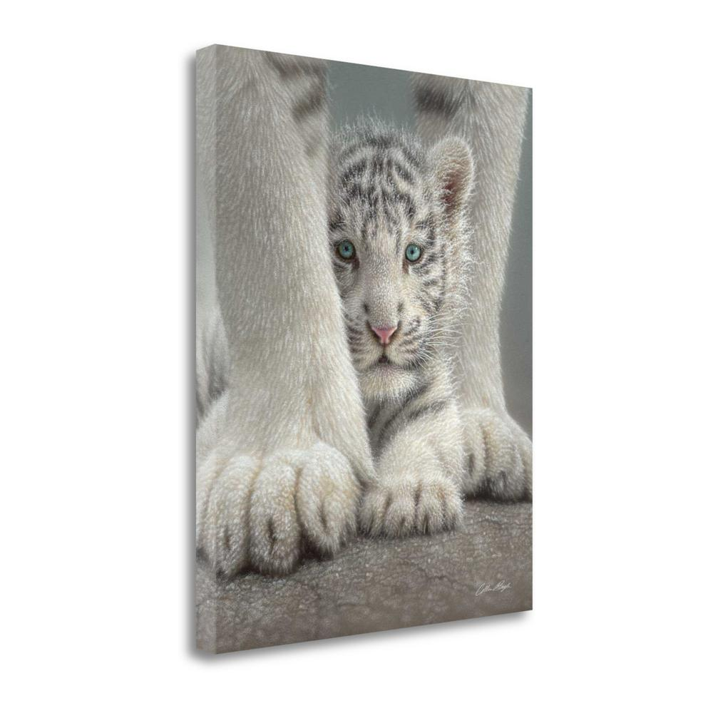 """""""Sheltered"""" By Colin Bogle, Fine Art Giclee Print on Gallery Wrap Canvas, Ready to Hang. Picture 1"""