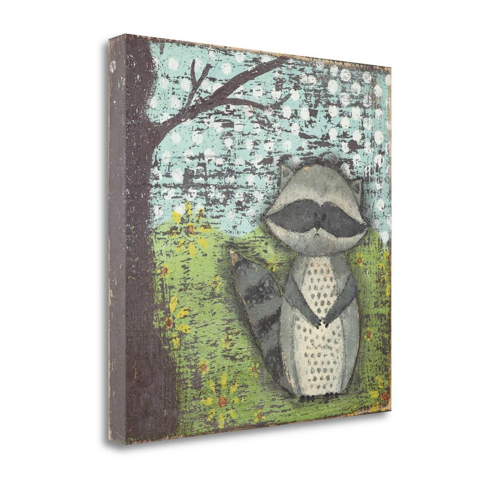 """""""Raccoon"""" By Cassandra Cushman, Fine Art Giclee Print on Gallery Wrap Canvas, Ready to Hang. Picture 1"""