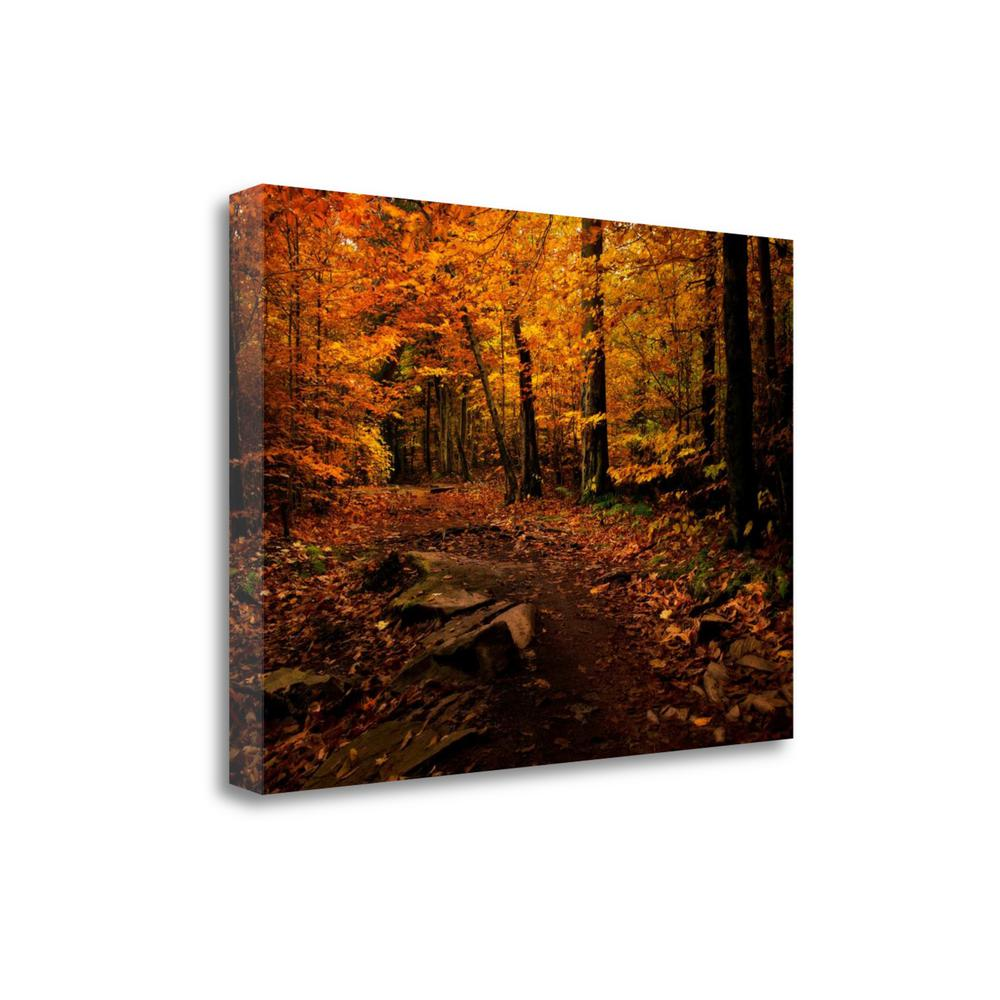 """Autumn Path"" By Natalie Mikaels, Fine Art Giclee Print on Gallery Wrap Canvas. The main picture."
