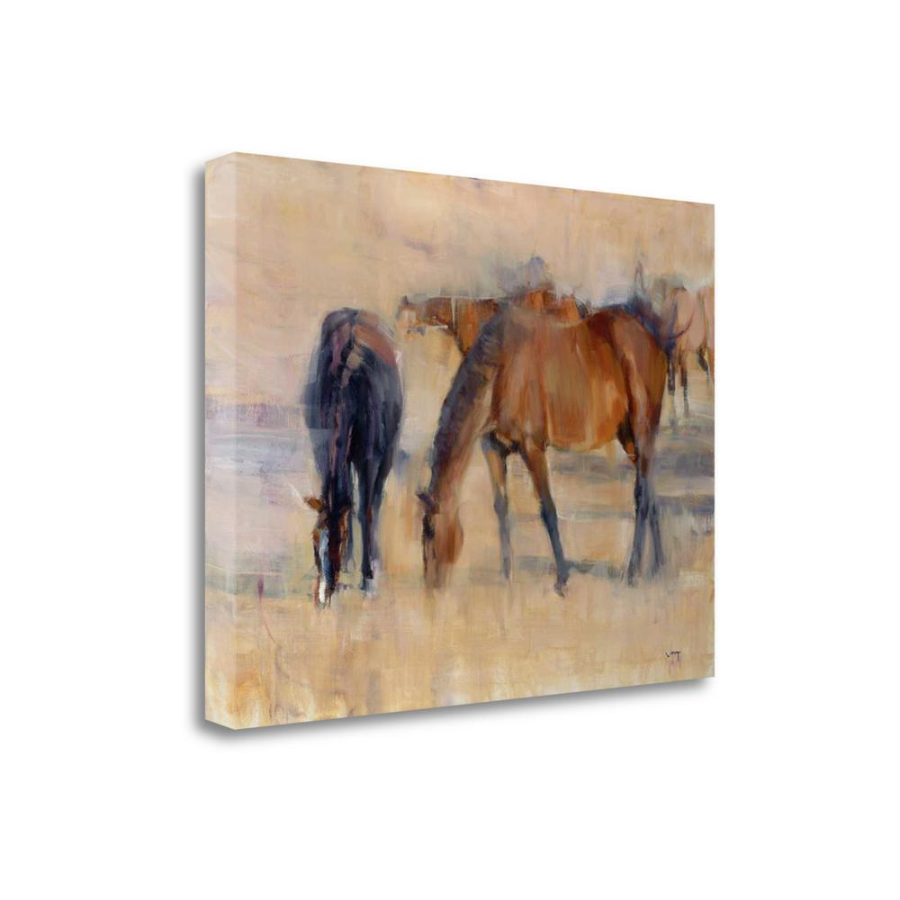 """""""Kentucky Morning 1"""" By Valtcho Tonov, Giclee Print on Gallery Wrap Canvas. Picture 1"""