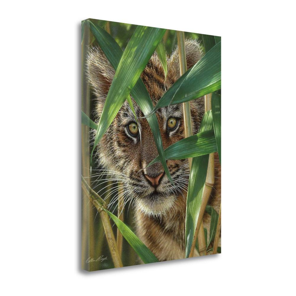"""""""Peekaboo"""" By Colin Bogle, Fine Art Giclee Print on Gallery Wrap Canvas, Ready to Hang. Picture 1"""