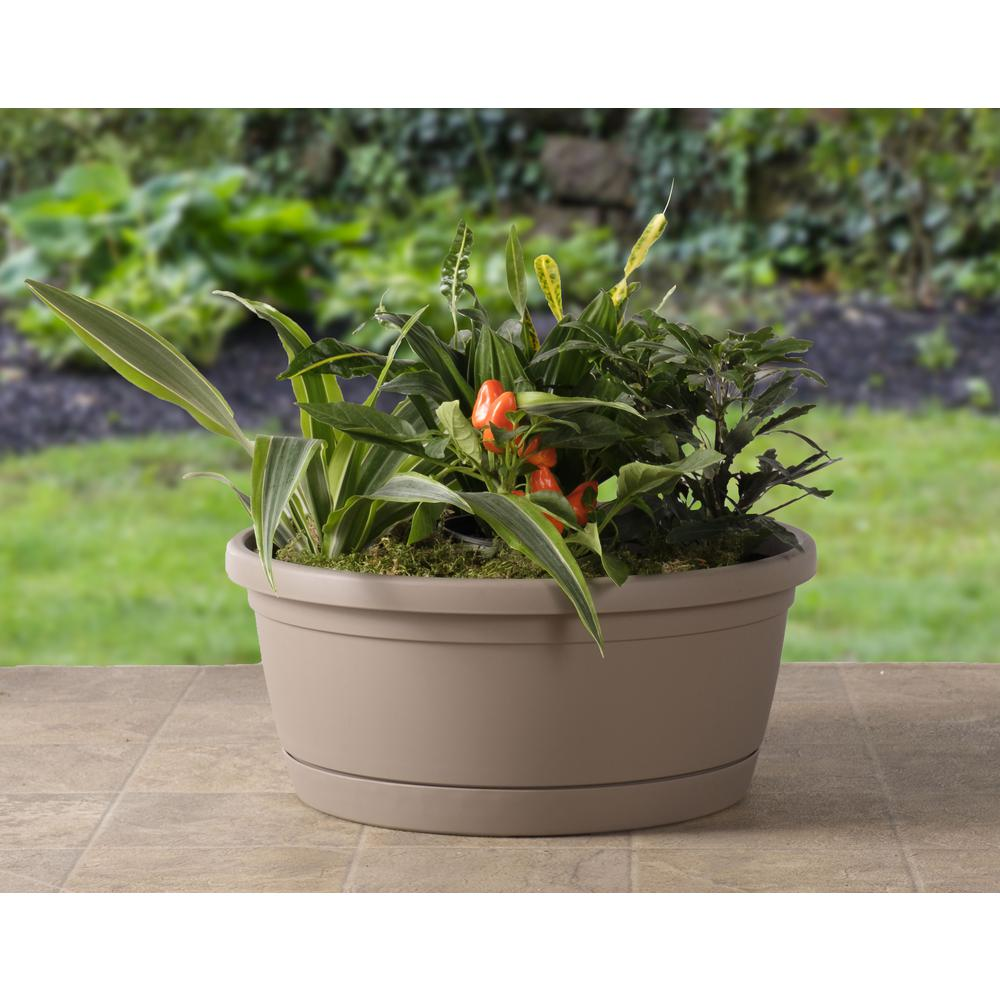 Libis Plant Bowl with attached saucer in Tortora. Picture 3