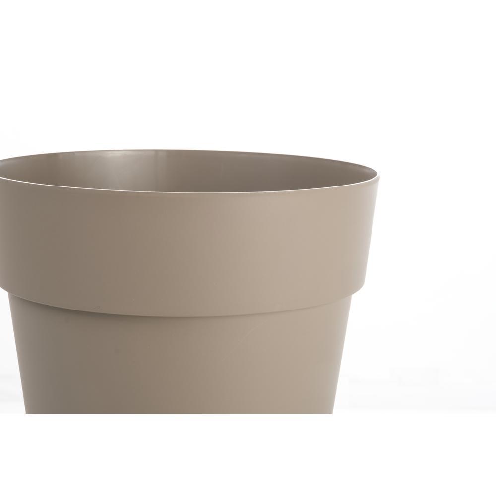 Liken Pot, Medium in Tortora. Picture 2