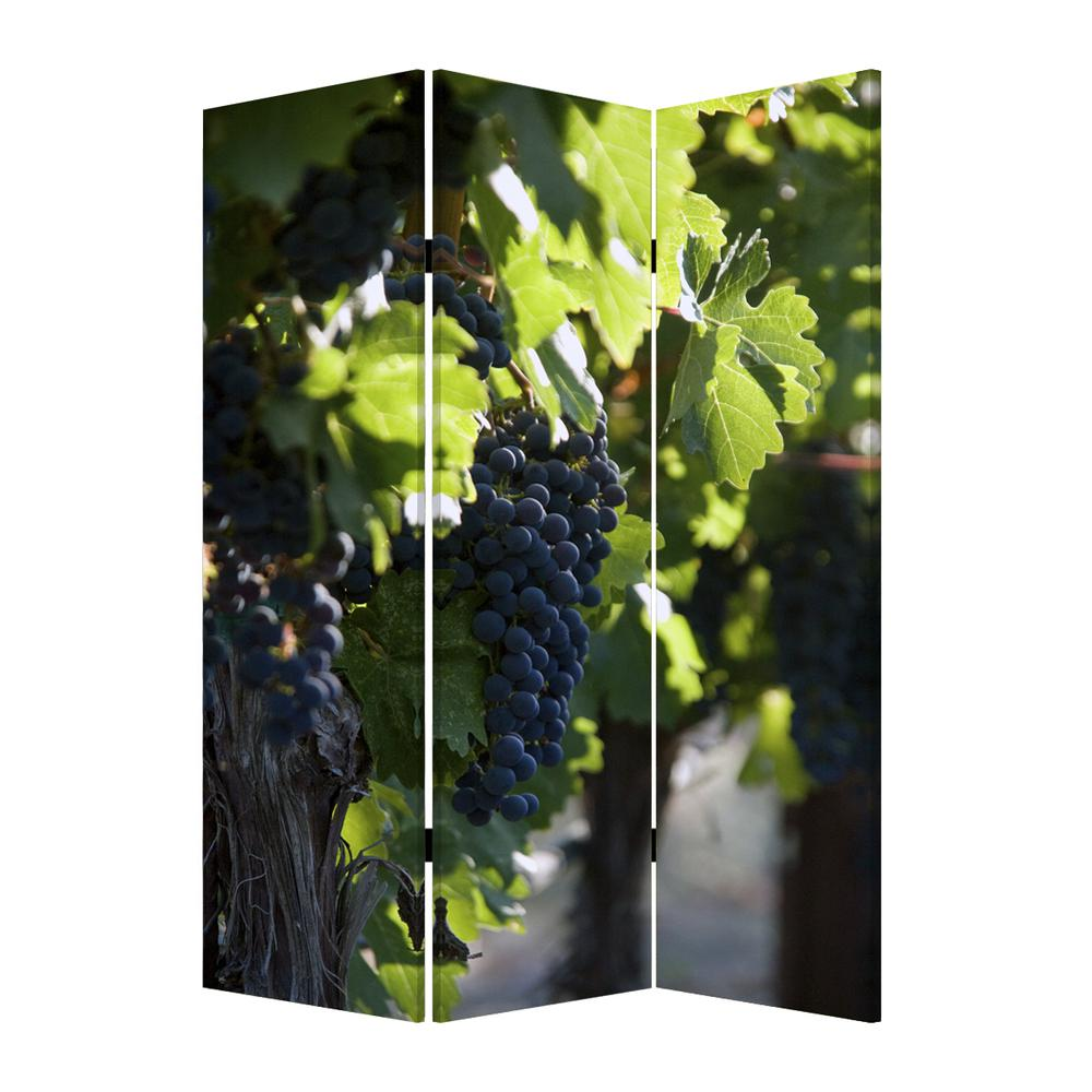 """1"""" x 48"""" x 72"""" Multi Color Wood Canvas Wine Country  Screen - 274640. Picture 1"""