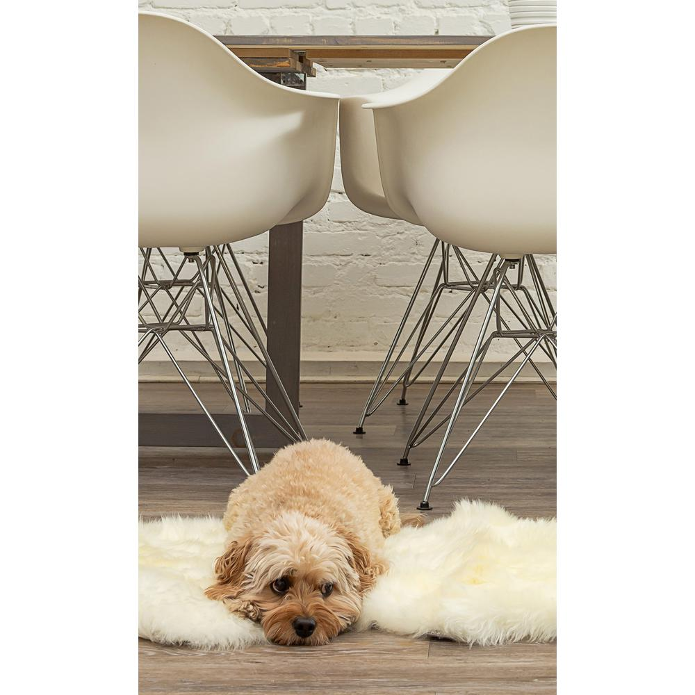 2' x 3'  Natural New Zealand Sheepskin Wool Area Rug in White - 293188. Picture 3