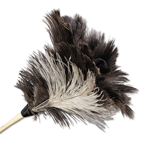"""Professional Ostrich Feather Duster, 13"""" Handle. Picture 3"""